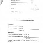 Акт Ревизионной 2013 004